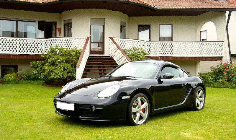 Ein Porsche auf dem Rasen